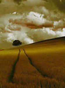 O caminho para se ir de um lugar ao mesmo lugar…